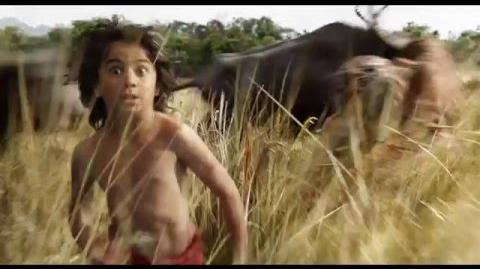 El libro de la selva - Nuevo Adelanto (Doblado al español)