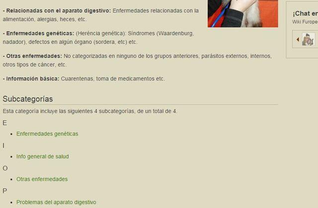 Archivo:Subcategorías.jpg