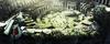 Slidespot-imagen06-3