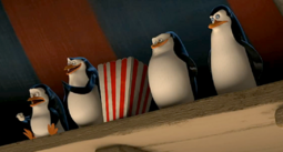 M3 penguins at circus with popcorn