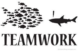 Teamwork wikia