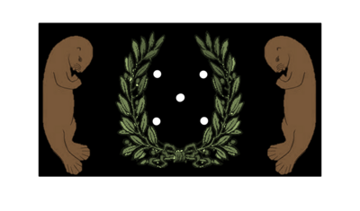 Otopian flag
