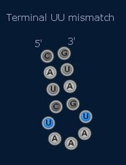 Terminal Mismatch