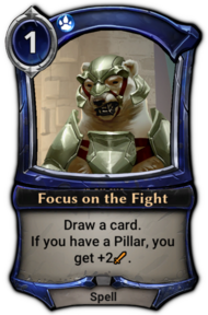 Focus on the Fight