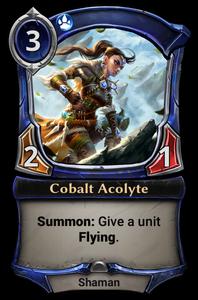 Cobalt Acolyte