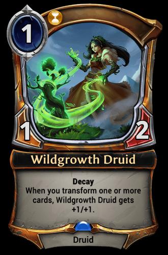 Wildgrowth Druid card