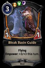 Bleak Basin Guide