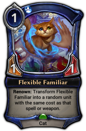 Flexible Familiar card