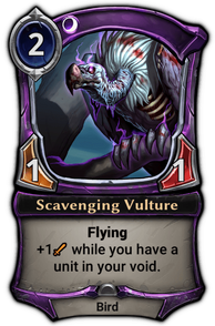 Scavenging Vulture