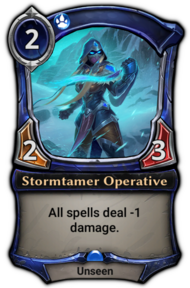 Stormtamer Operative
