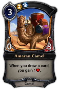 Amaran Camel