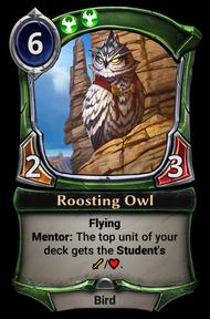 Roosting_Owl.png