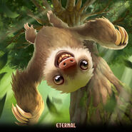Wallpaper - Tumbling Sloth