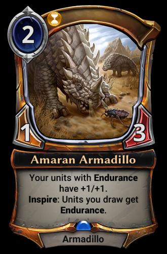 Amaran Armadillo card