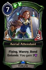 Aerial Attendant