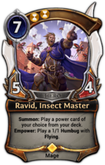 Ravid, Insect Master