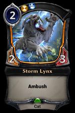 Storm Lynx