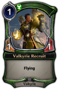 Valkyrie Recruit