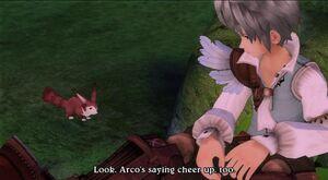 Allegretto and Arco