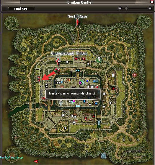 Naste Map