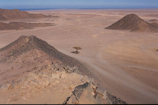 Egypt - Eastern Desert by the Red Sea