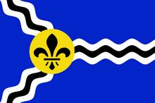 Hvidovia Flag