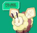 Polbee