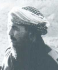 Amos Yarkoni