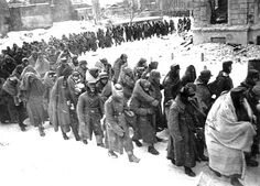 German surrender in STalingrad