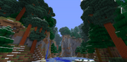 Redwood Snow Hills