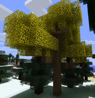 File:Yellow Maple.png