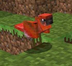 File:Bird3.jpg