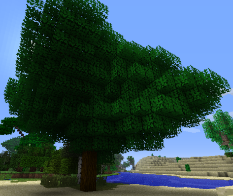 File:Beech Tree.png