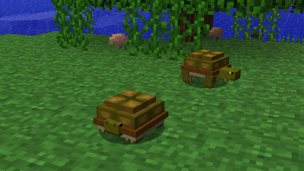 File:Turtles1.png