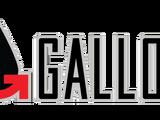 Gallon Oil