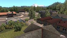 Mount Shasta Weed