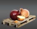 Cargo icon Onions