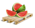 Cargo icon Watermelons