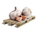 Cargo icon Garlic