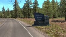 OR Malheur Forest