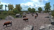 Pendleton Cattle Drive Sculpture Park