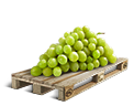 Cargo icon Grapes