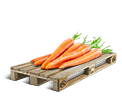 Cargo icon Carrots