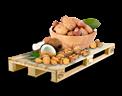 Cargo icon Nuts