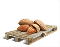 Cargo icon Almond