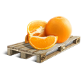 Cargo icon Oranges