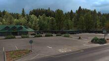 Eureka Motel Trees