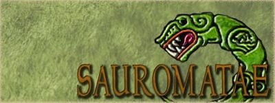 Faction banner 19sau