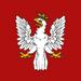 POL flag EU4
