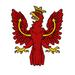 TIR flag EU4